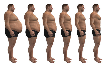 Жир а не мышцы похудение